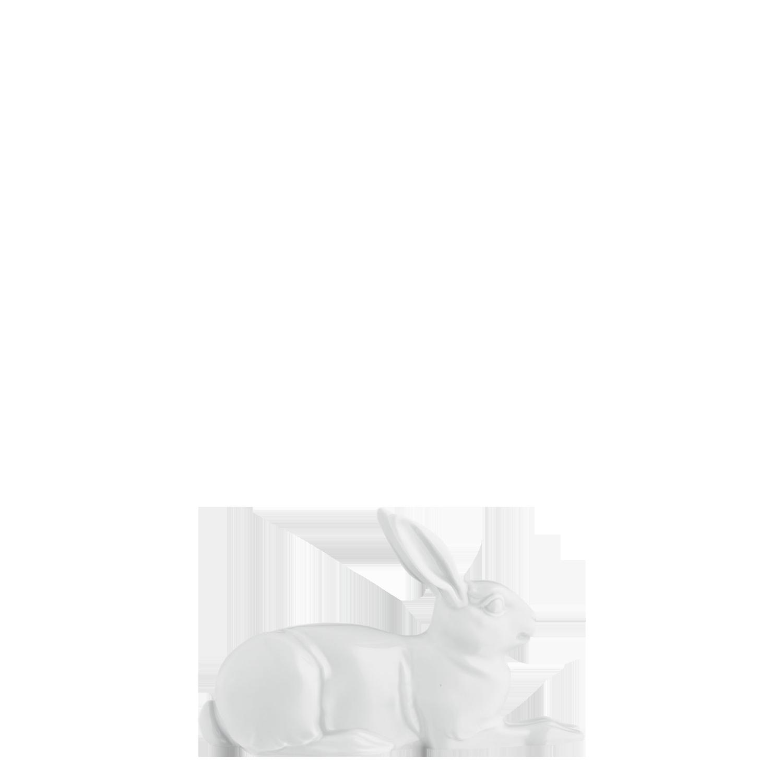 Hare 2012 ALBRECHT