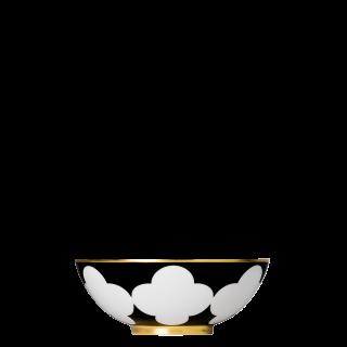 Schale M