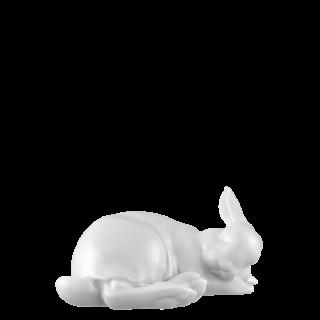 Hare 2020 PAULINE -big-