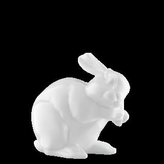 Hare 2013 CASPER