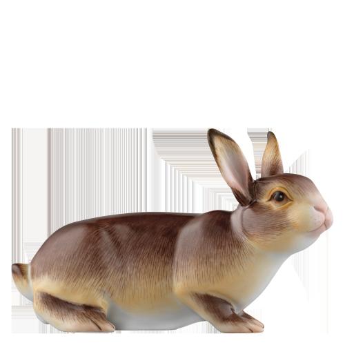 Hare 2015 GUSTAV