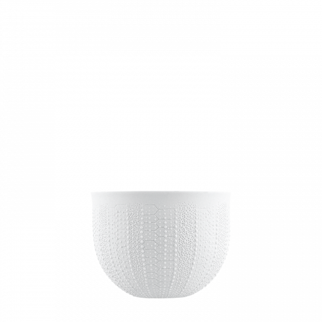 Bowl double-walled (relief sea urchin)