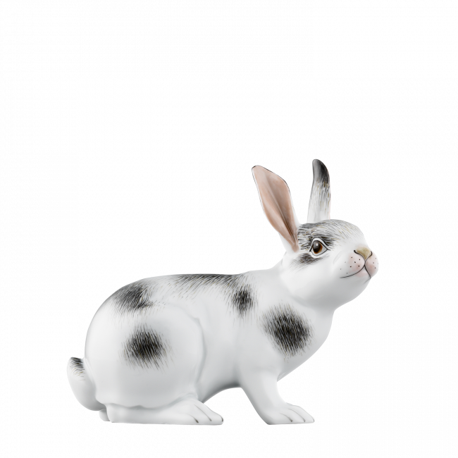 Hare 2017 MANFRED