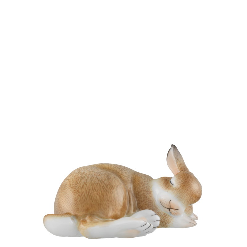 Hare 2020 PAULINE
