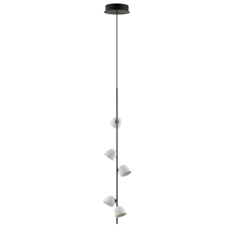 Pendant lamp anthracite - 5 LED