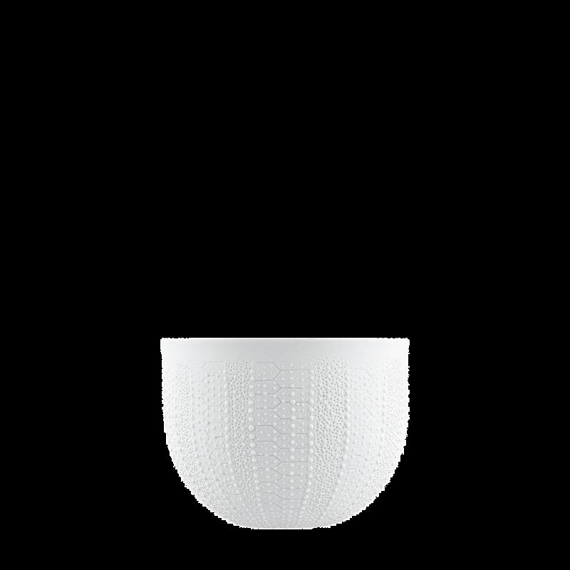Schale doppelwandig (Relief Seeigel)