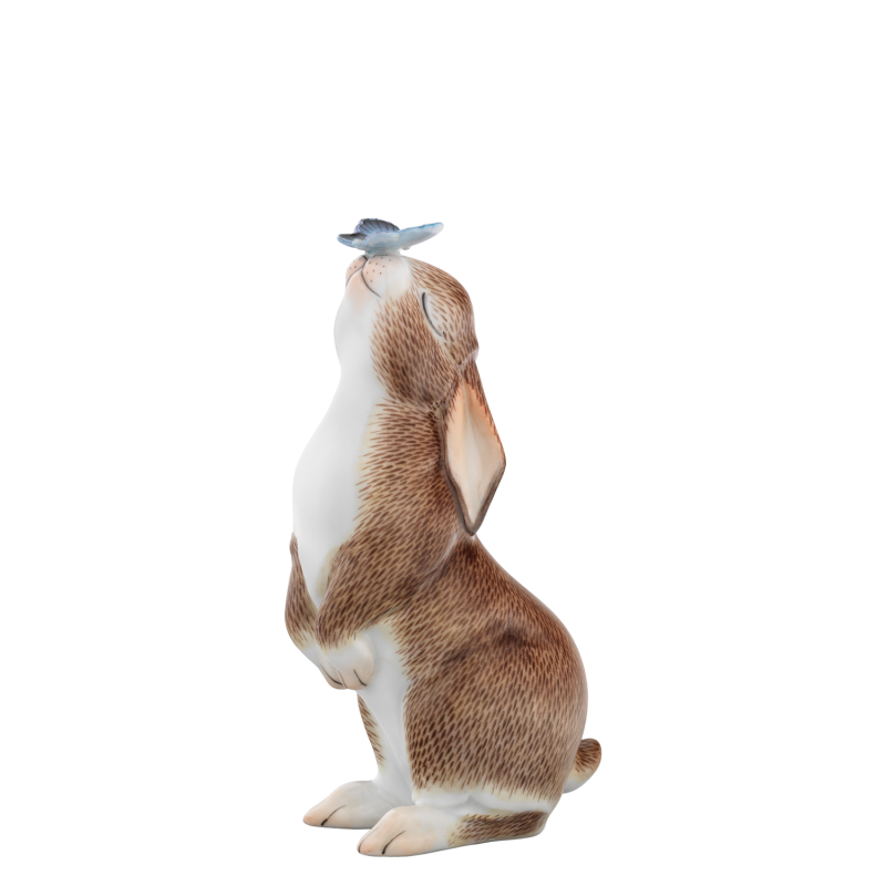 Hare 2021 LUCY