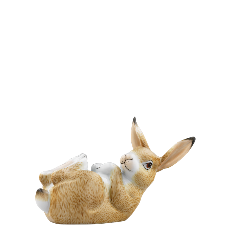 HASE 2018 LOTTE