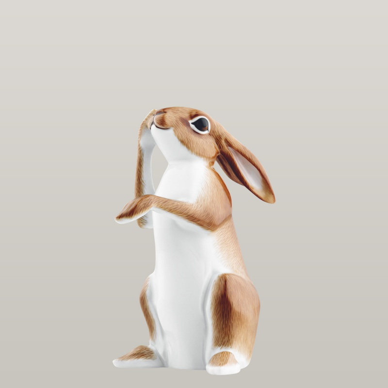 Hare 2009 CONSTANTIN