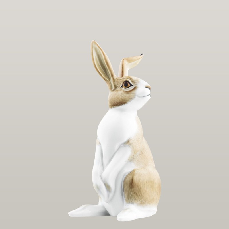 Hare 2011 KASIMIR